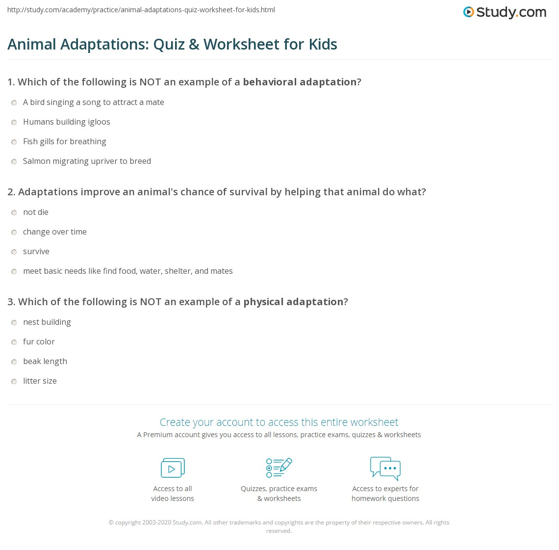 Animal Adaptations: Quiz & Worksheet for Kids | Study.com