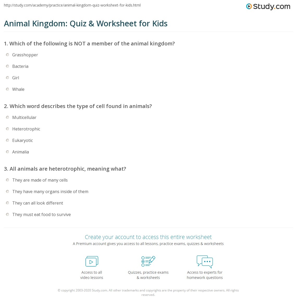 Animal Kingdom Quiz Worksheet For Kids Study Com