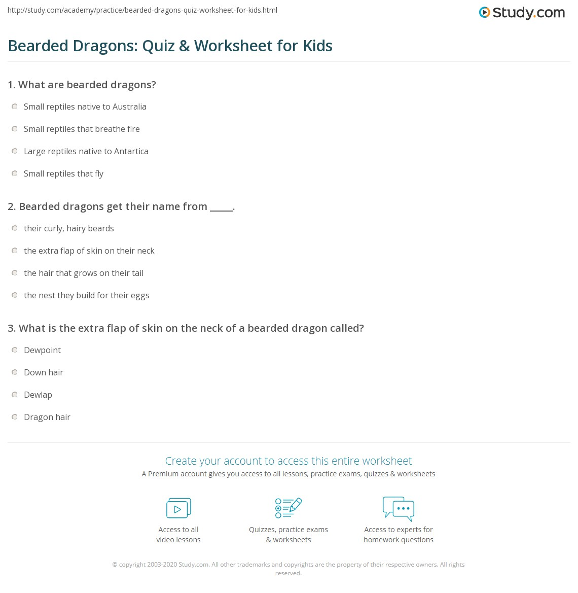 Bearded Dragons: Quiz & Worksheet for Kids | Study.com