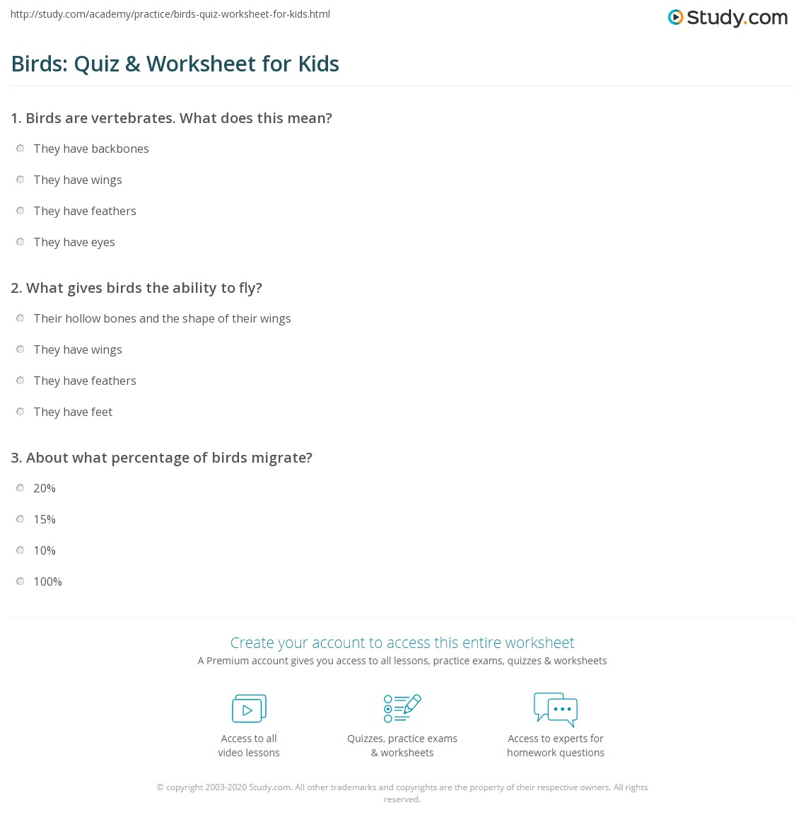 Birds: Quiz & Worksheet for Kids | Study.com