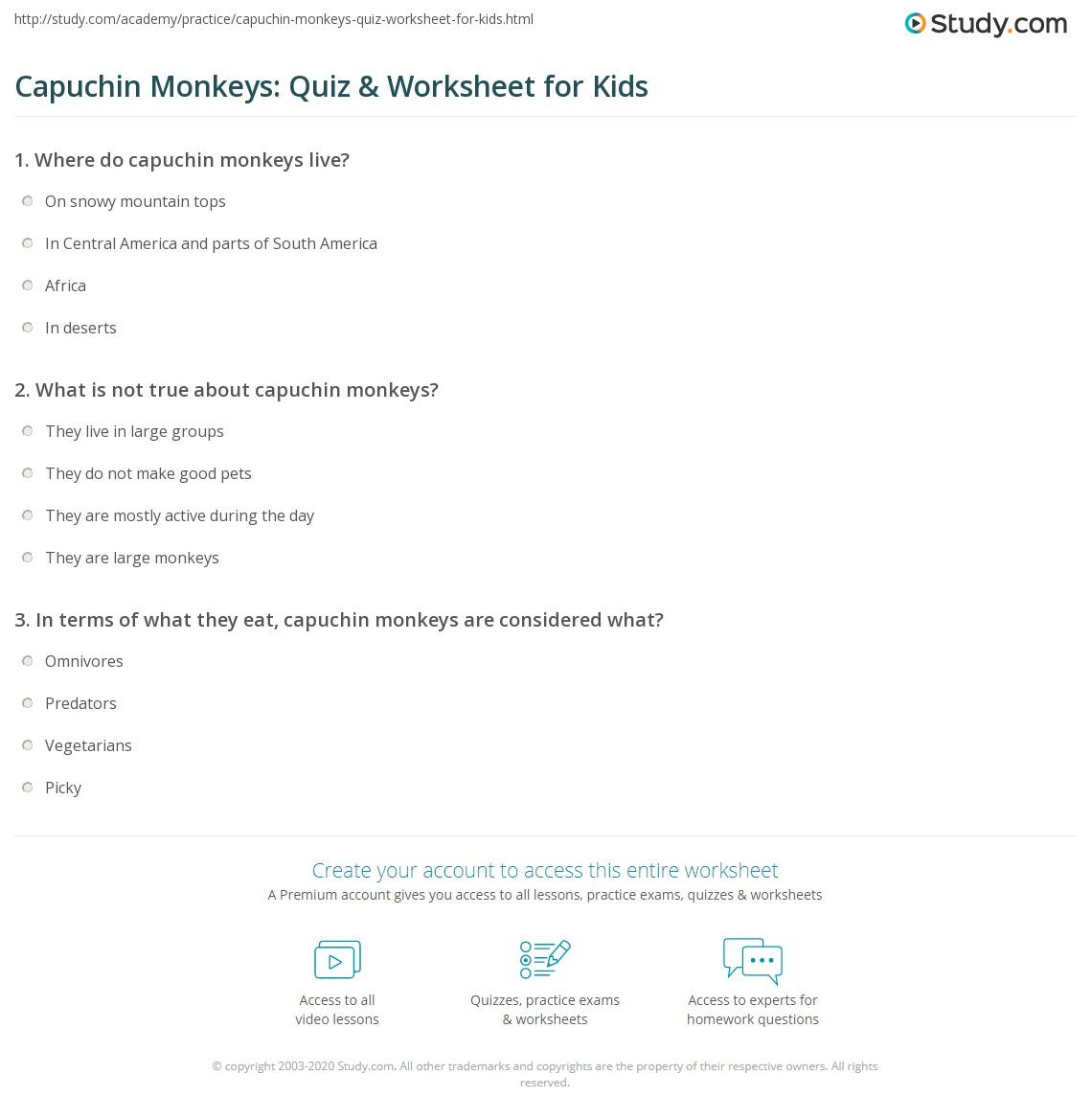 Capuchin Monkeys: Quiz & Worksheet for Kids | Study com