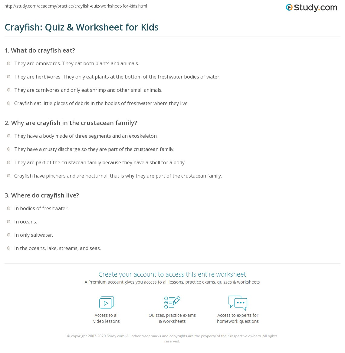 crayfish quiz worksheet for kids. Black Bedroom Furniture Sets. Home Design Ideas