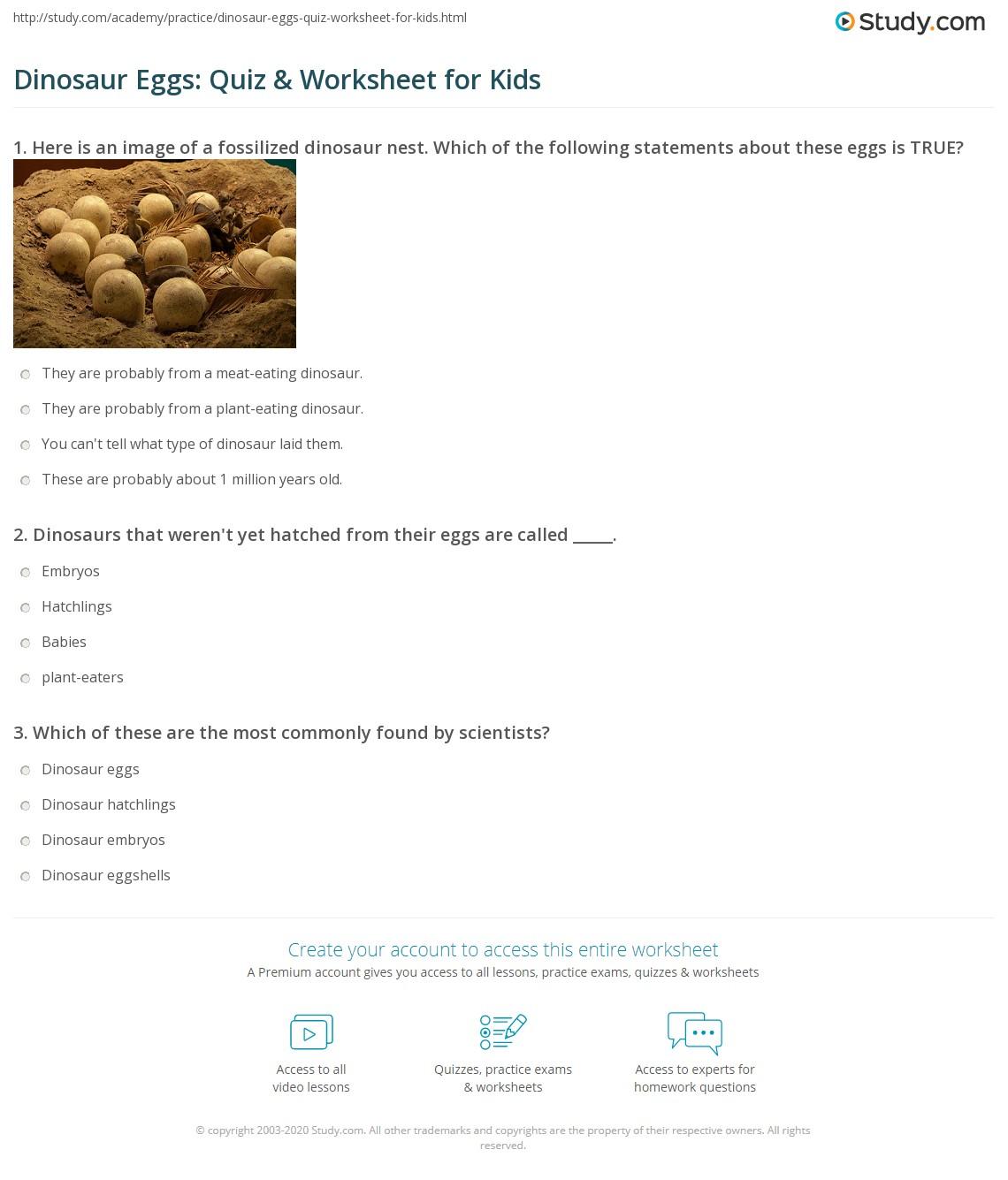 Dinosaur Eggs: Quiz & Worksheet for Kids | Study.com