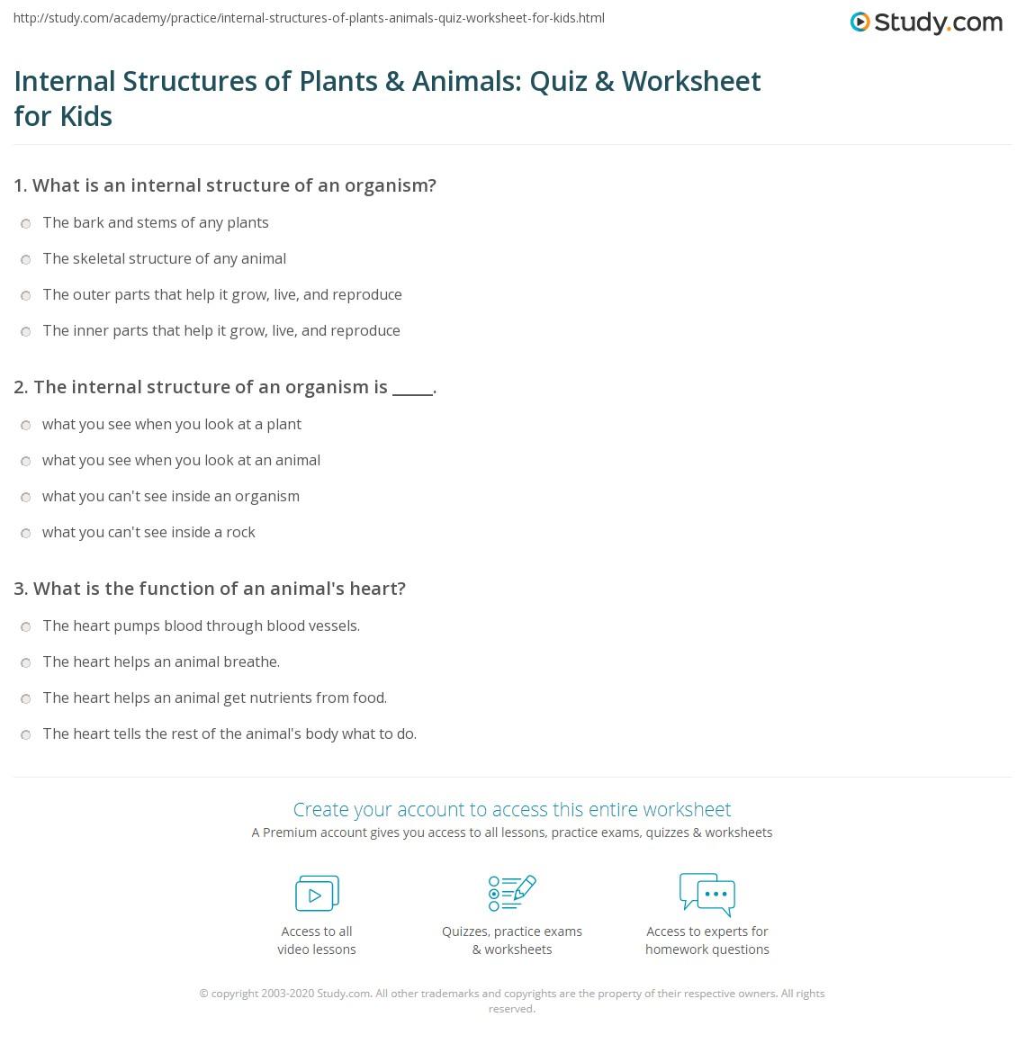 worksheet Grade 3 Structures Worksheets internal structures of plants animals quiz worksheet for kids print organisms lesson worksheet