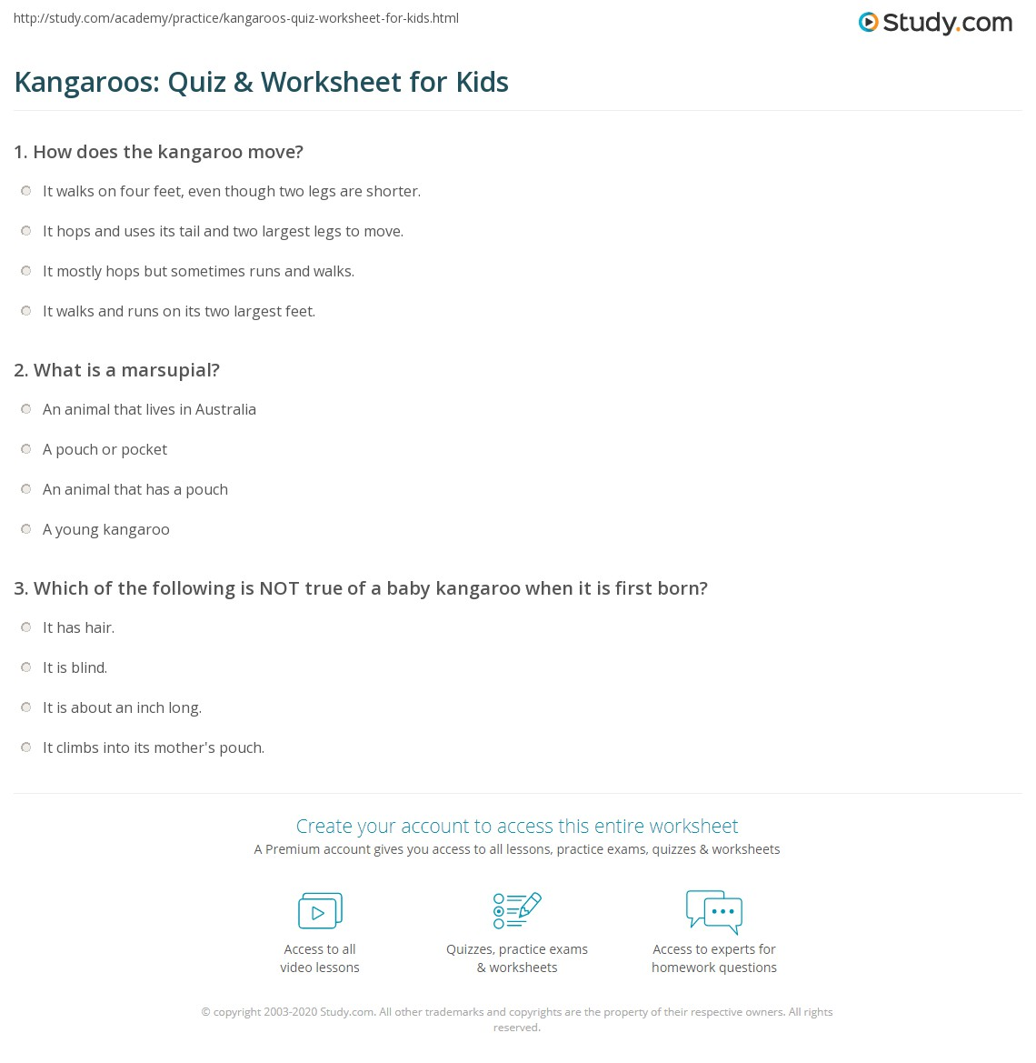 Kangaroos: Quiz & Worksheet for Kids | Study.com