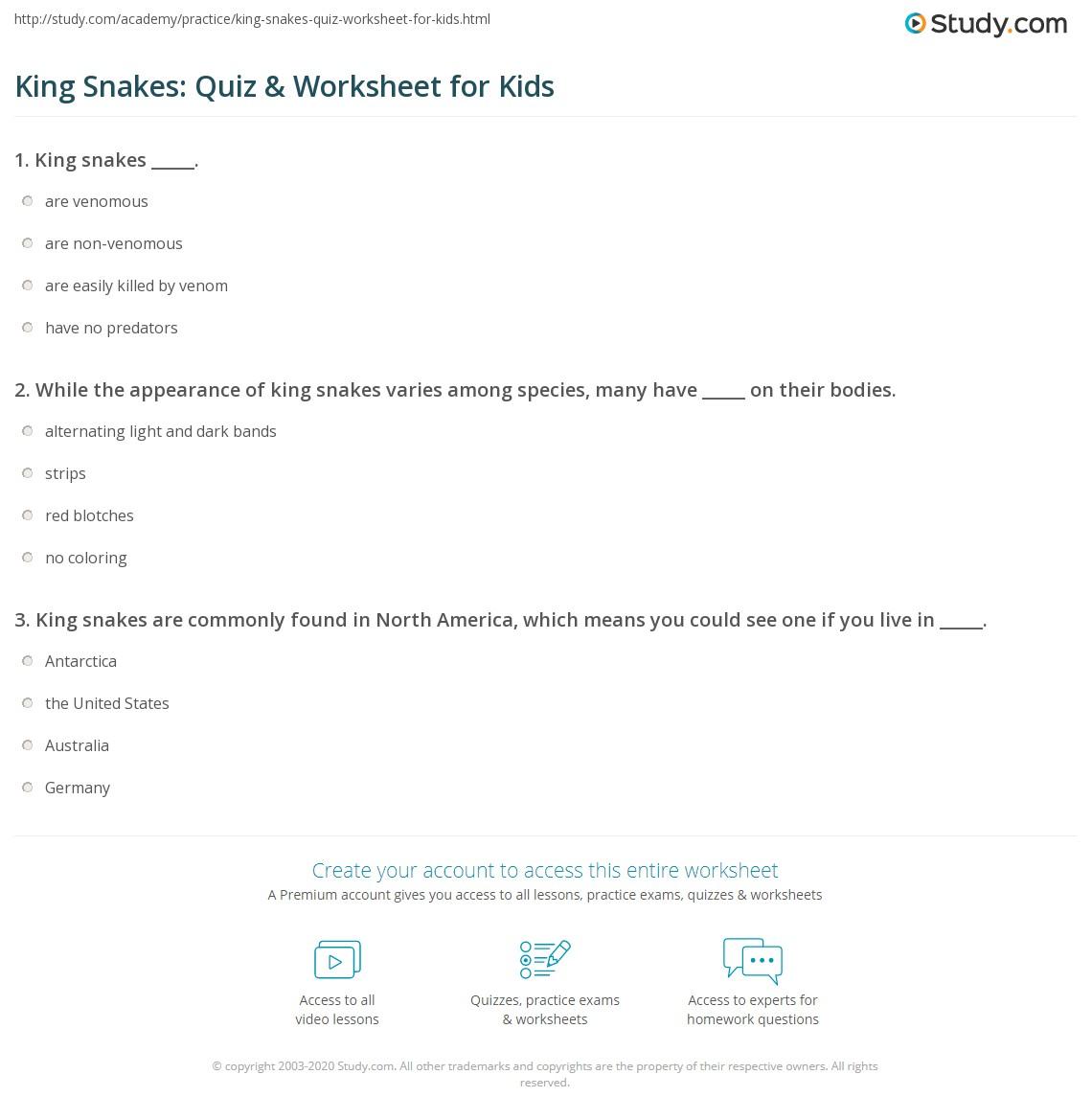 King Snakes Quiz Worksheet For Kids
