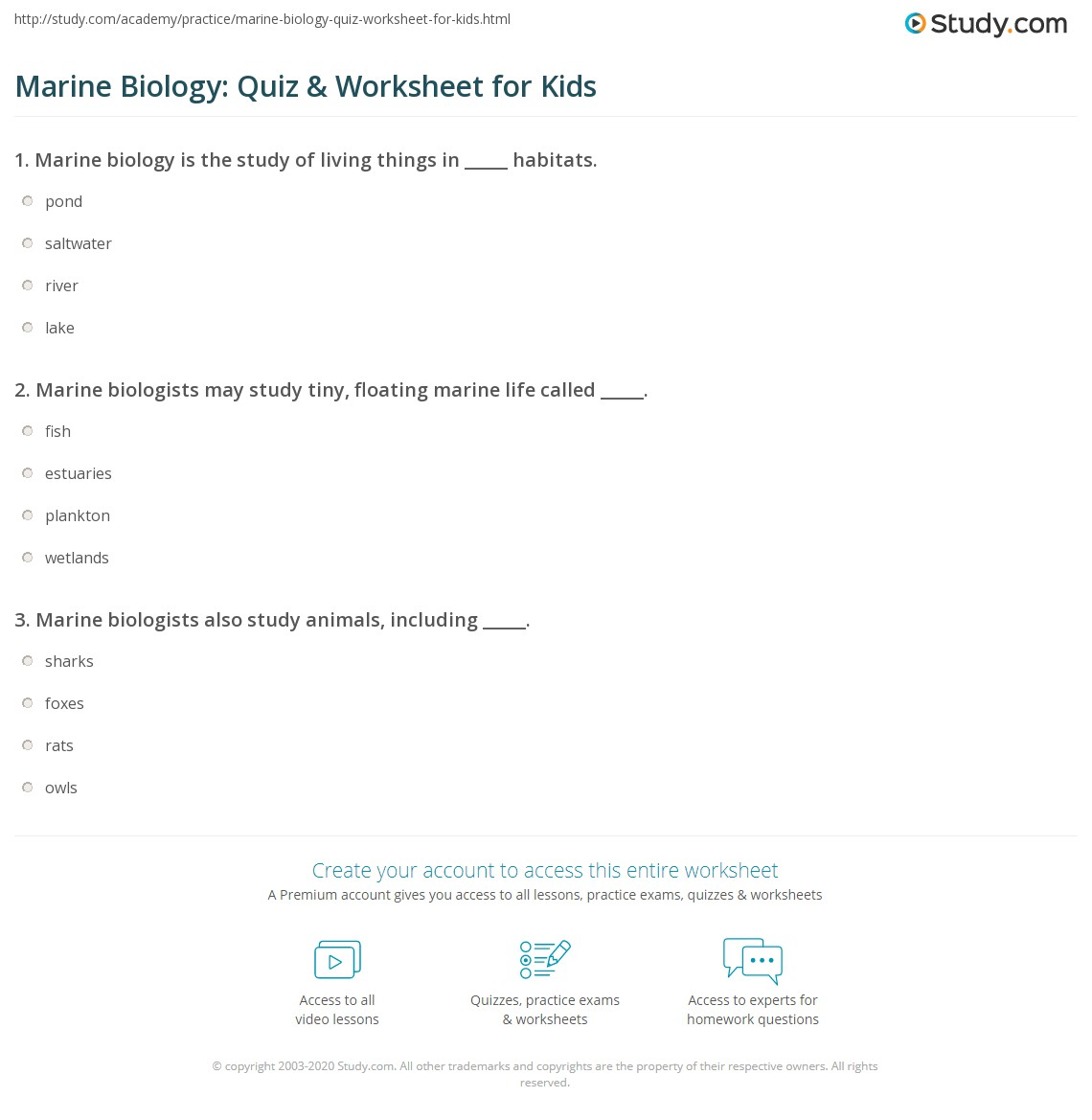 Print Marine Biology Facts Lesson For Kids Worksheet
