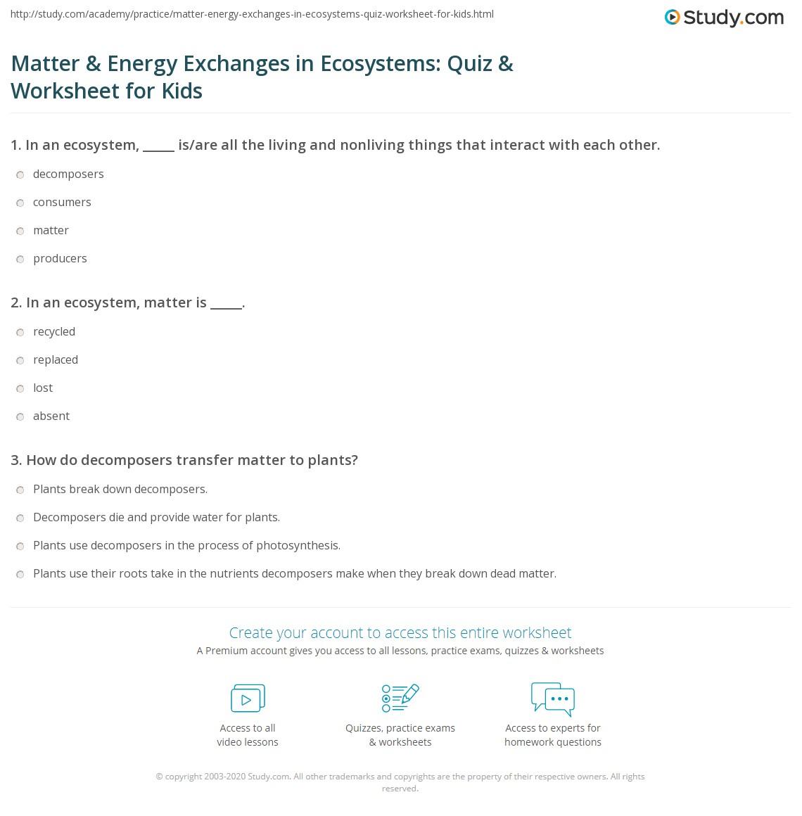 Worksheets Matter And Energy Worksheets matter energy exchanges in ecosystems quiz worksheet for kids print transfer lesson worksheet