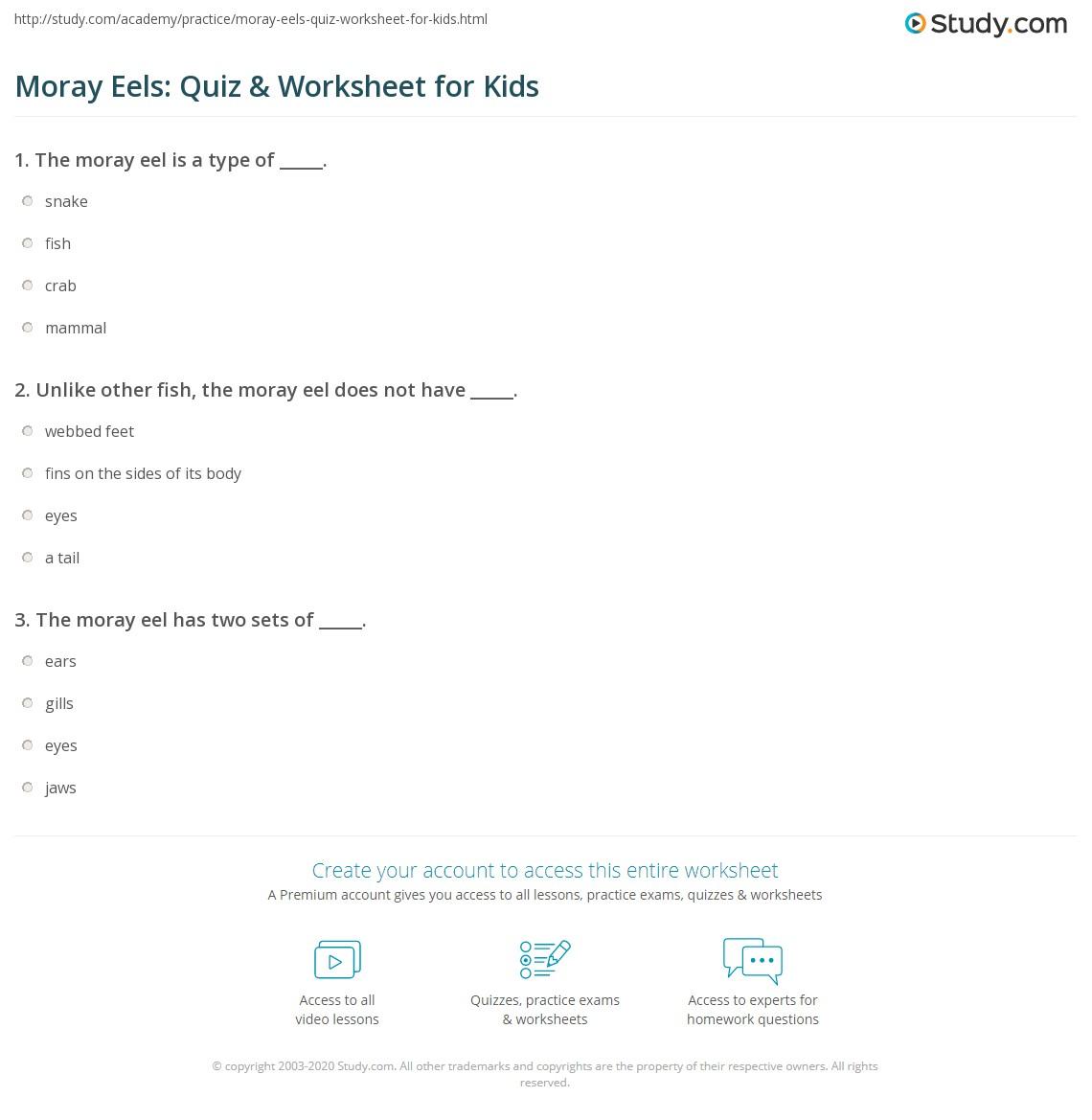 Moray Eels: Quiz & Worksheet for Kids | Study.com