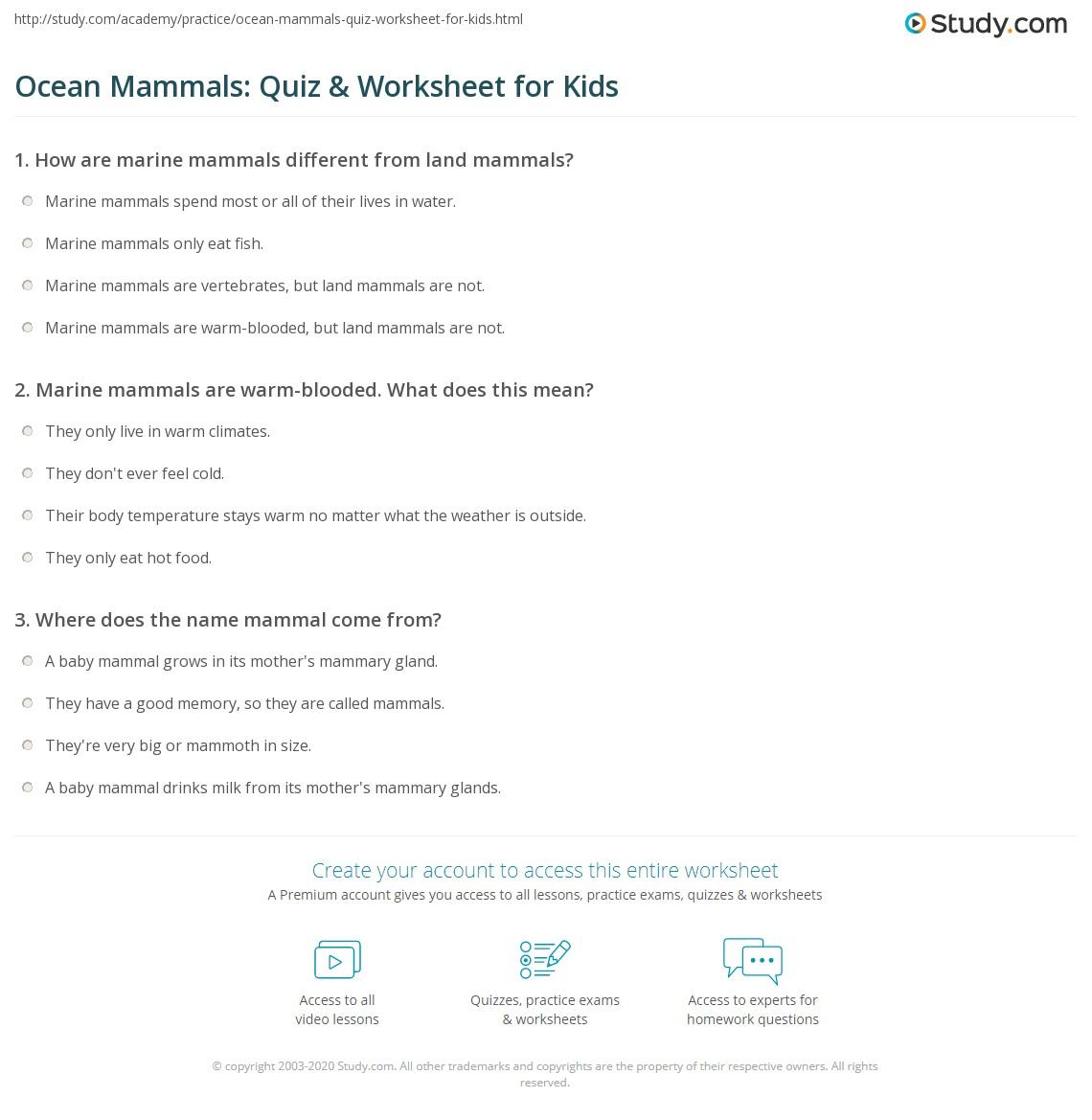 ocean mammals quiz worksheet for kids. Black Bedroom Furniture Sets. Home Design Ideas