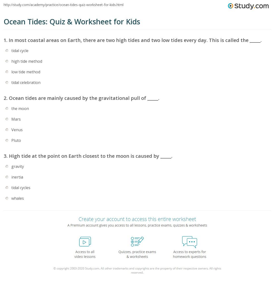 29 Credit Card Worksheet For High School Students Free Worksheet Spreadsheet [ 1169 x 1140 Pixel ]