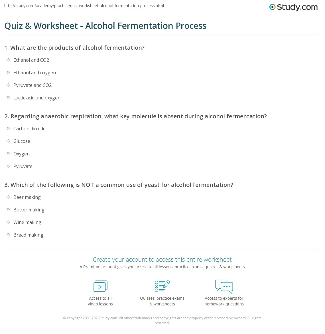 Quiz Worksheet Alcohol Fermentation Process Study Com