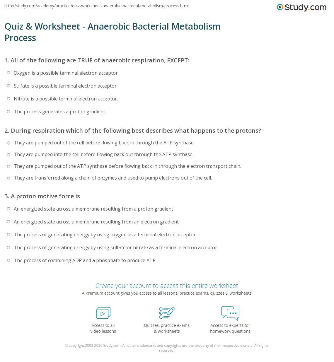 Quiz Worksheet Anaerobic Bacterial Metabolism Process – Aerobic Respiration Worksheet