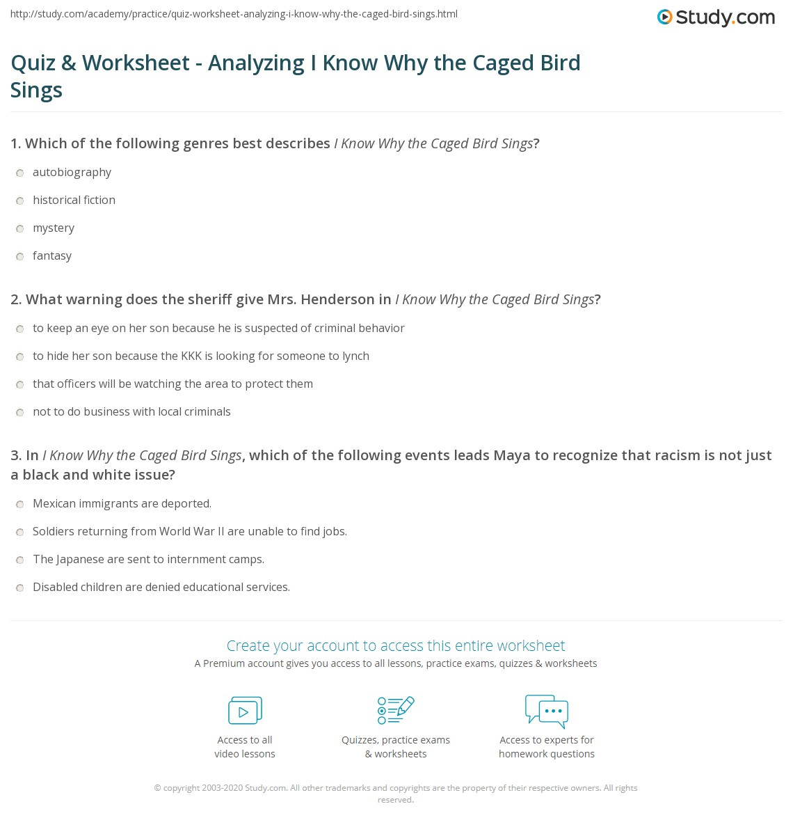 quiz worksheet analyzing i know why the caged bird sings print i know why the caged bird sings analysis themes worksheet