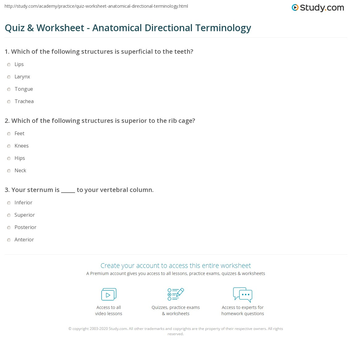Quiz Worksheet Anatomical Directional Terminology Study