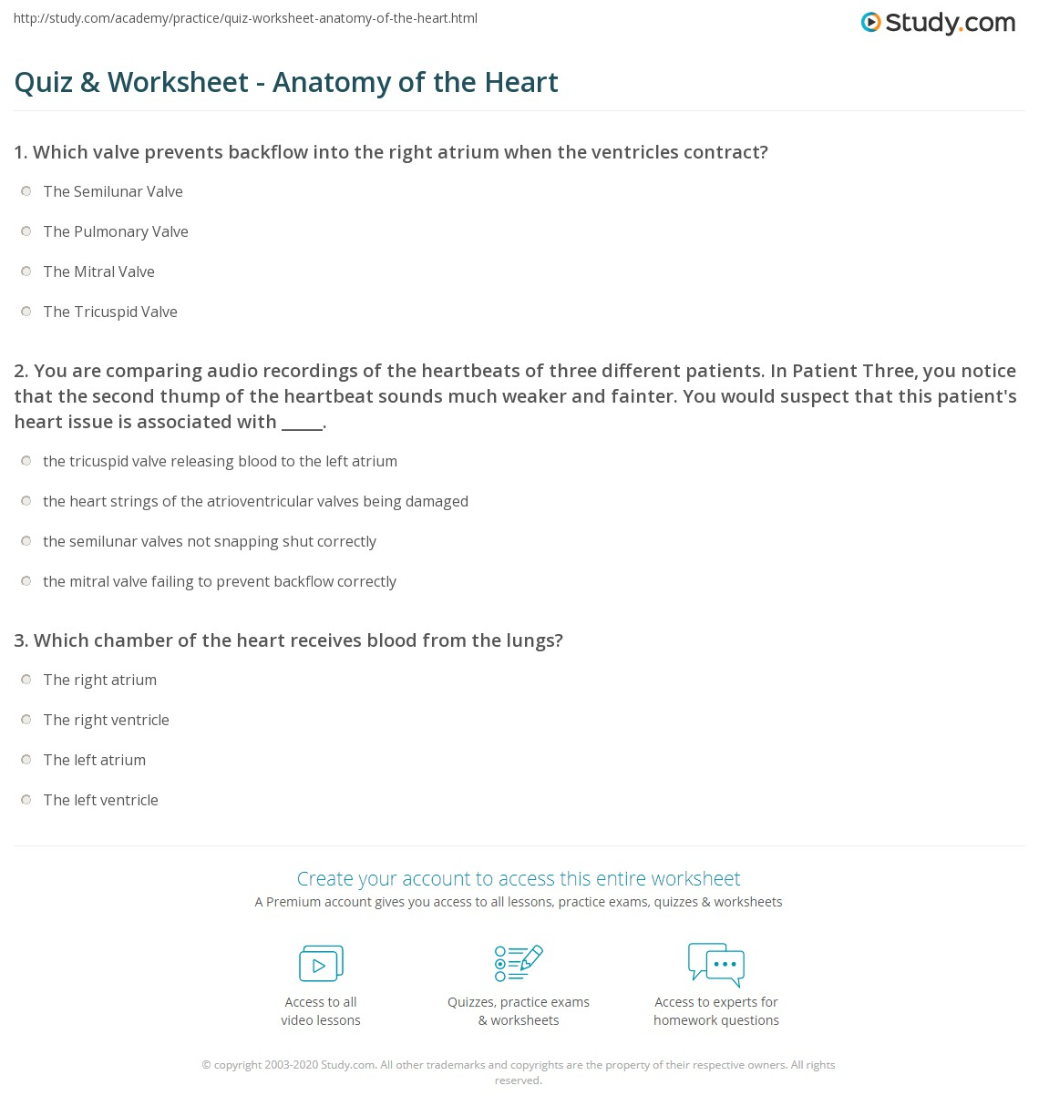 Quiz & Worksheet - Anatomy of the Heart | Study.com