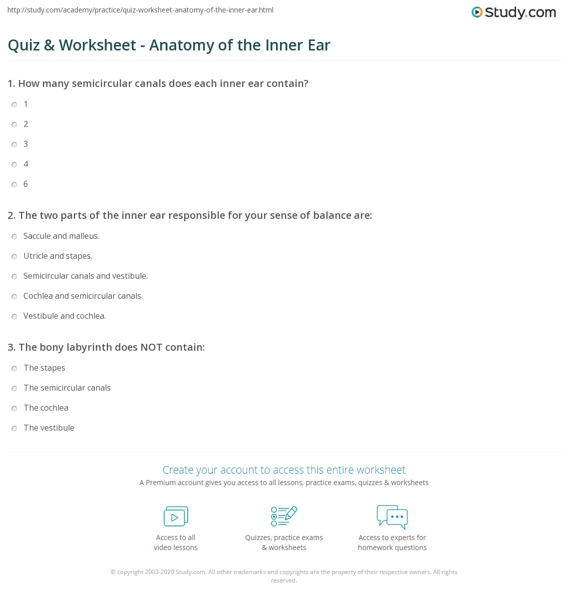 Quiz & Worksheet - Anatomy of the Inner Ear | Study.com