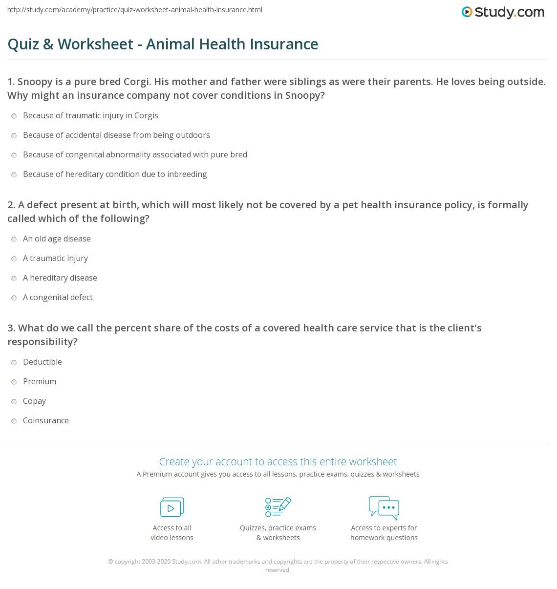 Quiz worksheet animal health insurance study print the basics of pet health insurance worksheet altavistaventures Images