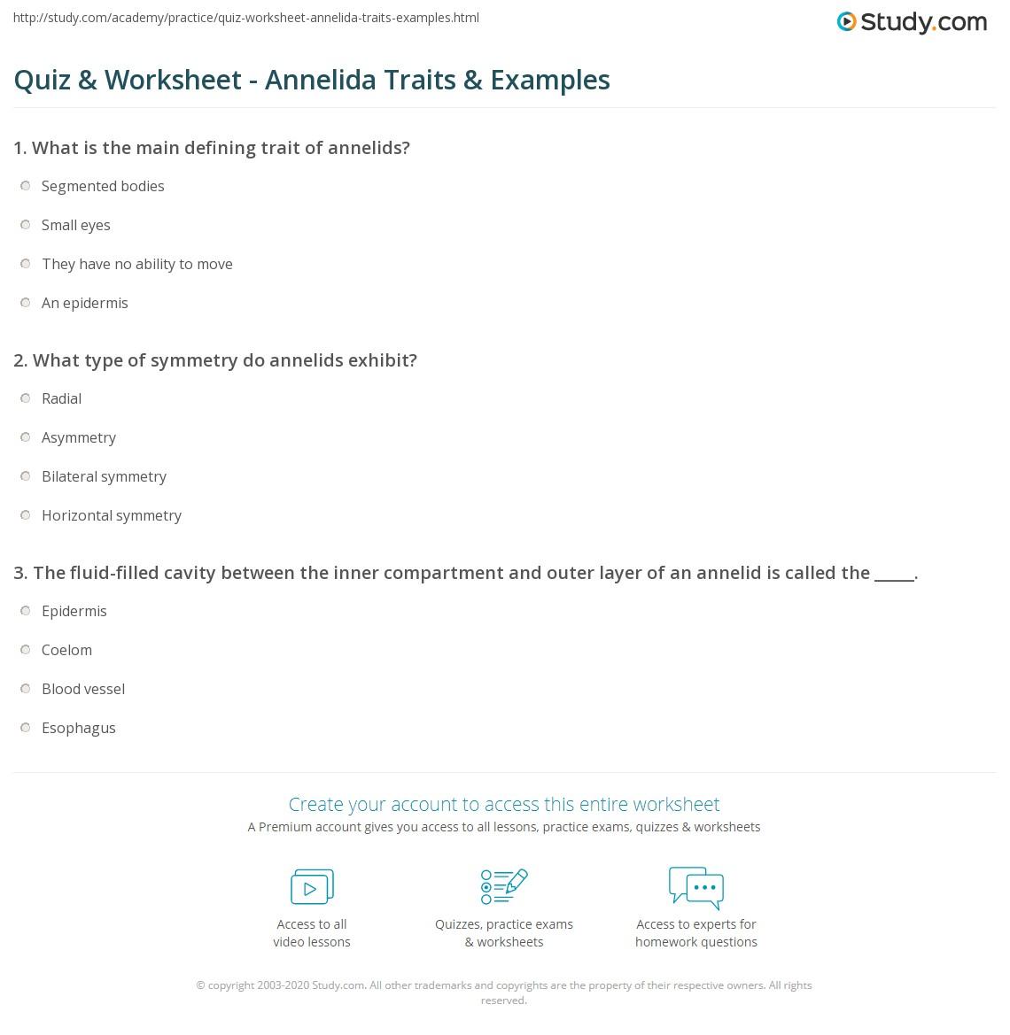 Quiz Worksheet Annelida Traits Examples Study