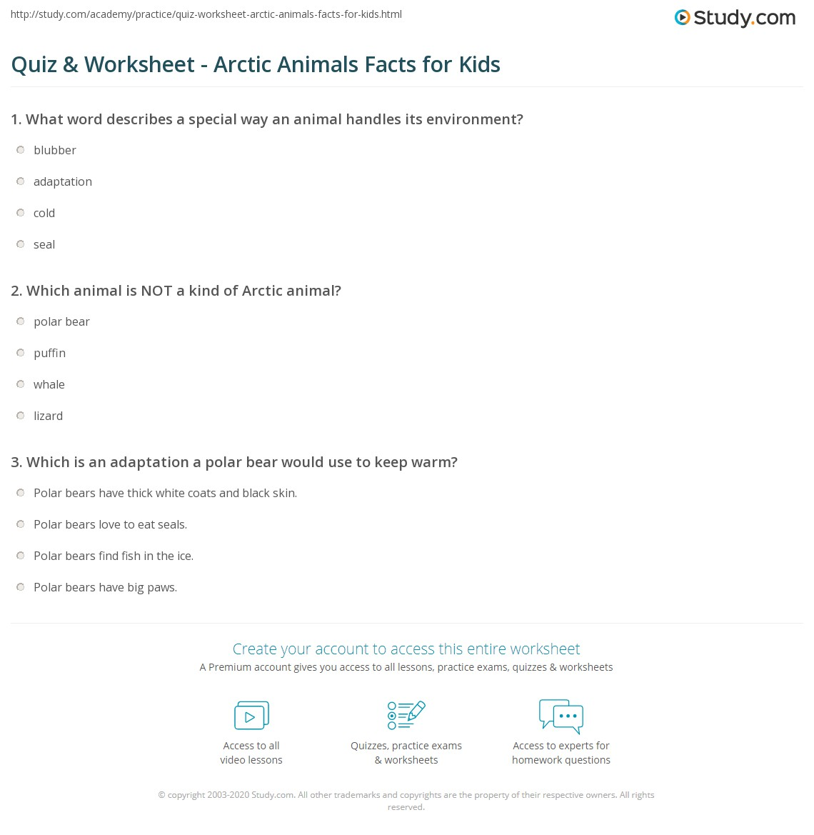 Quiz & Worksheet - Arctic Animals Facts for Kids | Study.com