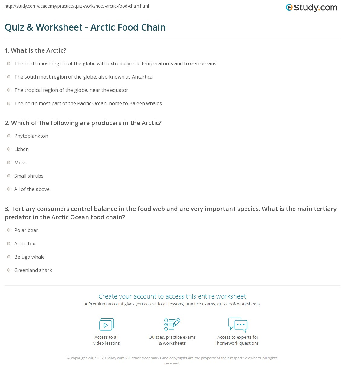 Arctic Ocean Food Web: Quiz & Worksheet - Arctic Food Chain
