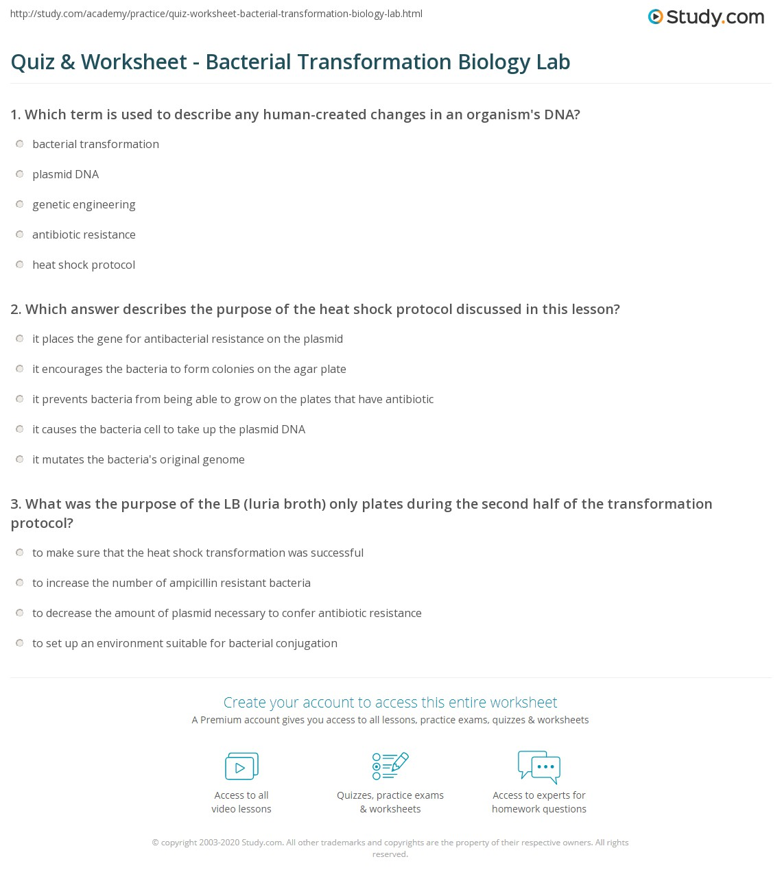 quiz worksheet bacterial transformation biology lab. Black Bedroom Furniture Sets. Home Design Ideas