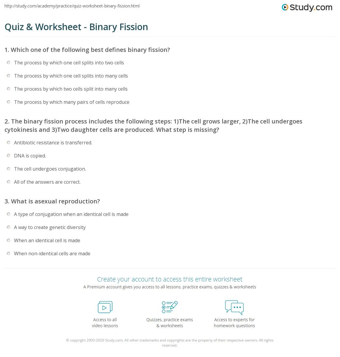 worksheet Binary Fission Worksheet quiz worksheet binary fission study com print definition steps examples worksheet