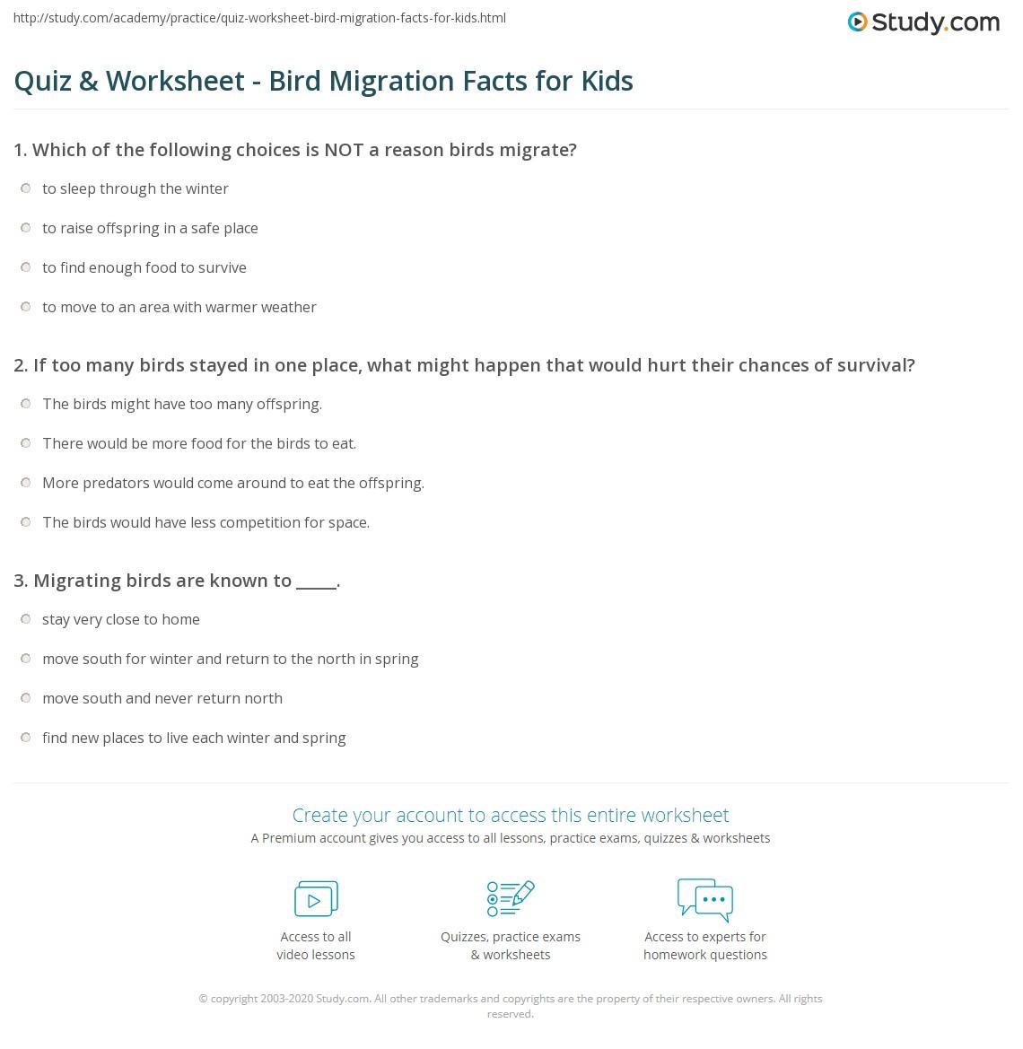Uncategorized Bird Worksheets quiz worksheet bird migration facts for kids study com print lesson worksheet