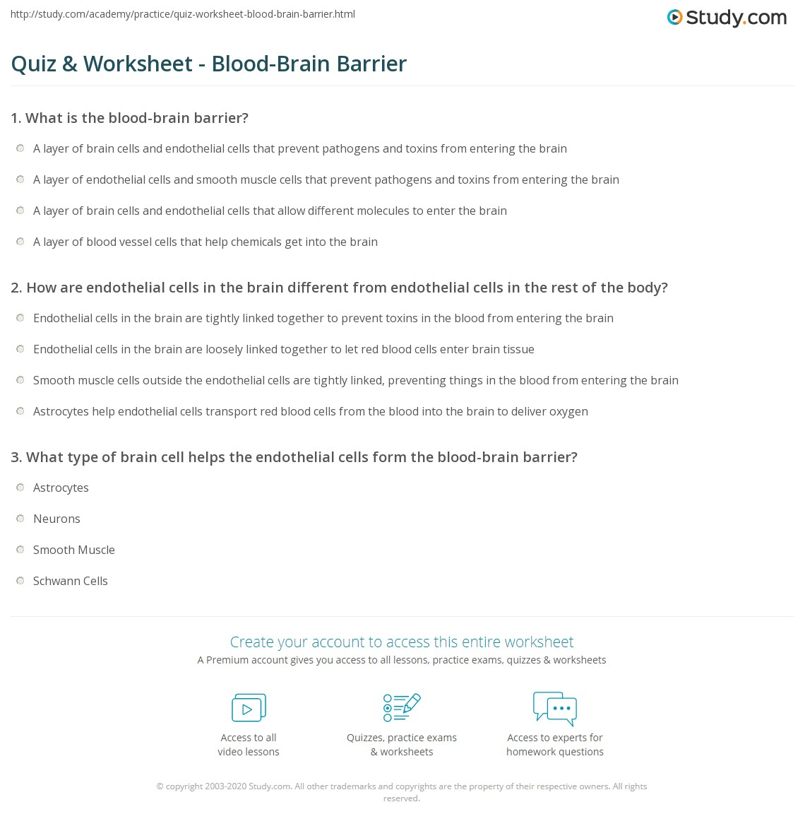 Quiz & Worksheet - Blood-Brain Barrier | Study.com