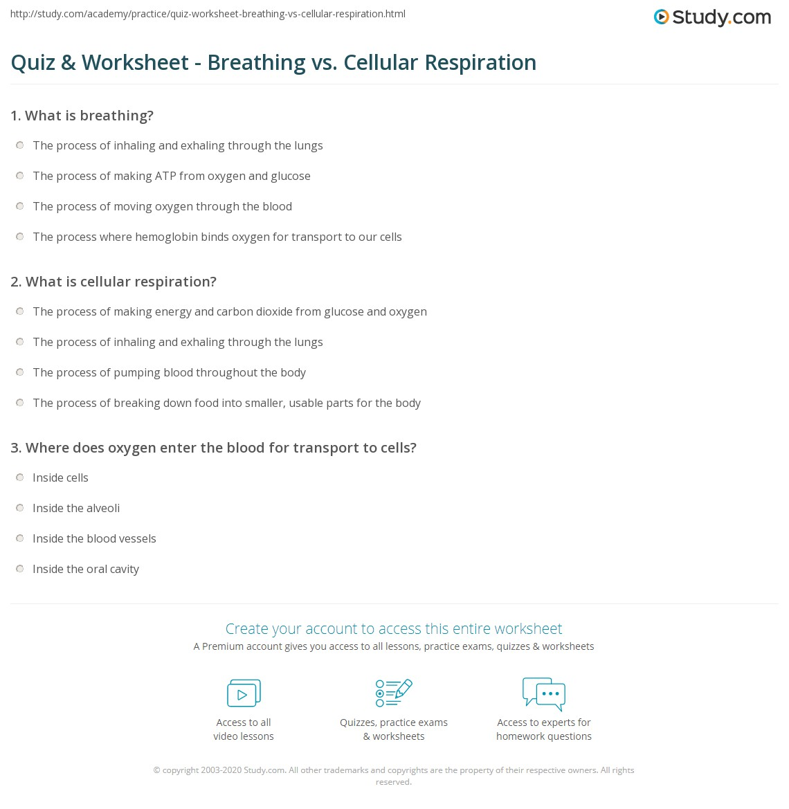 Quiz & Worksheet - Breathing vs. Cellular Respiration | Study.com
