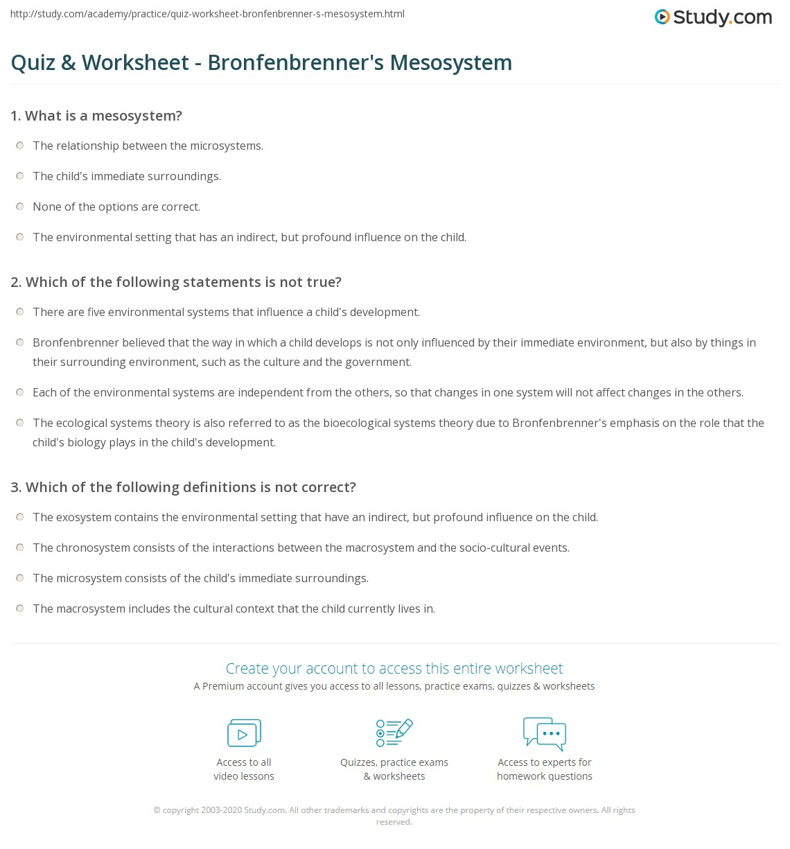 mesosystem examples