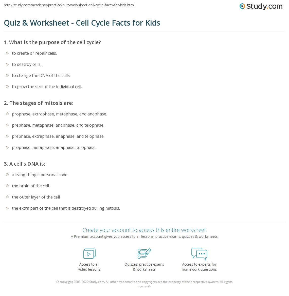 Quiz Worksheet Cell Cycle Facts For Kids Study