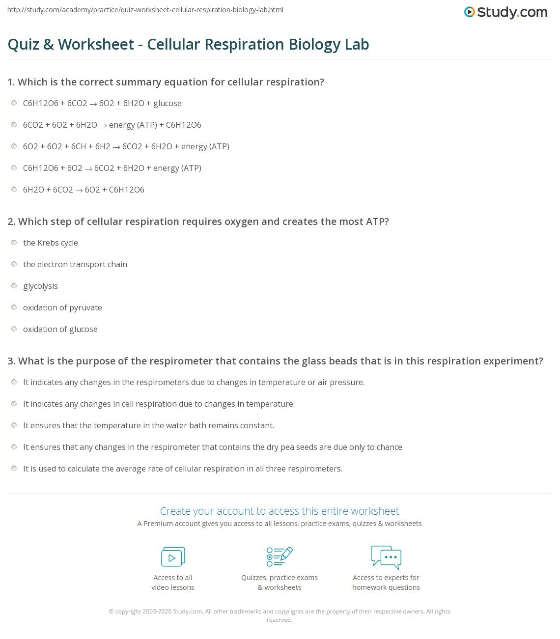 Quiz Worksheet Cellular Respiration Biology Lab Study