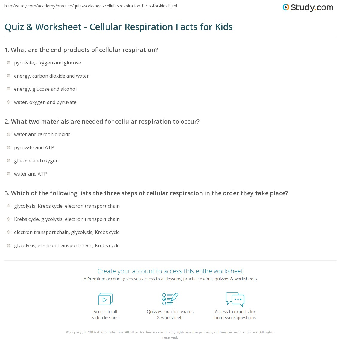 worksheet Cellular Respiration Diagram Worksheet quiz worksheet cellular respiration facts for kids study com print lesson definition steps worksheet