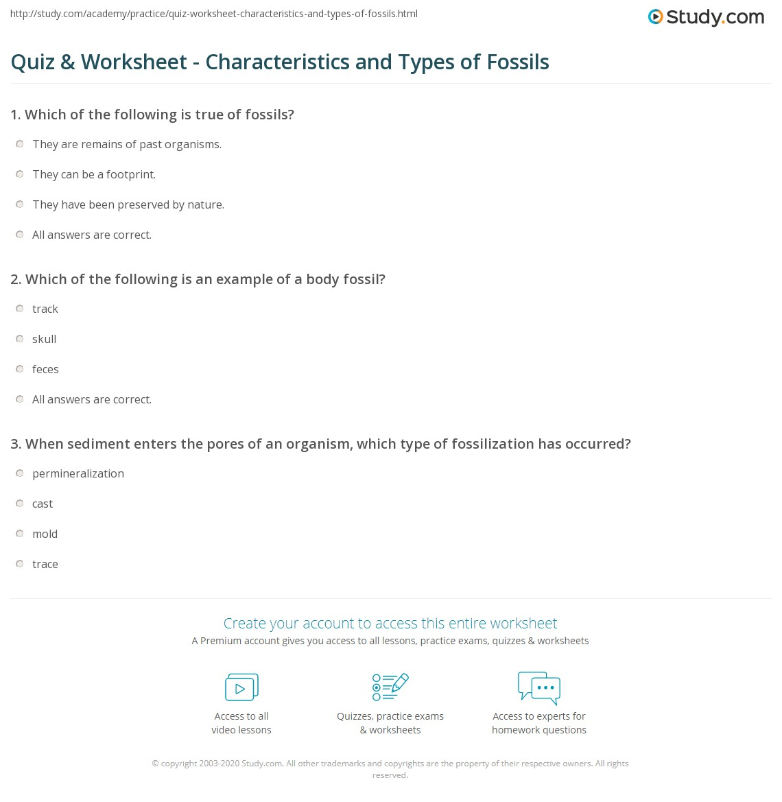 Quiz Worksheet Characteristics and Types of Fossils – Fossils Worksheets