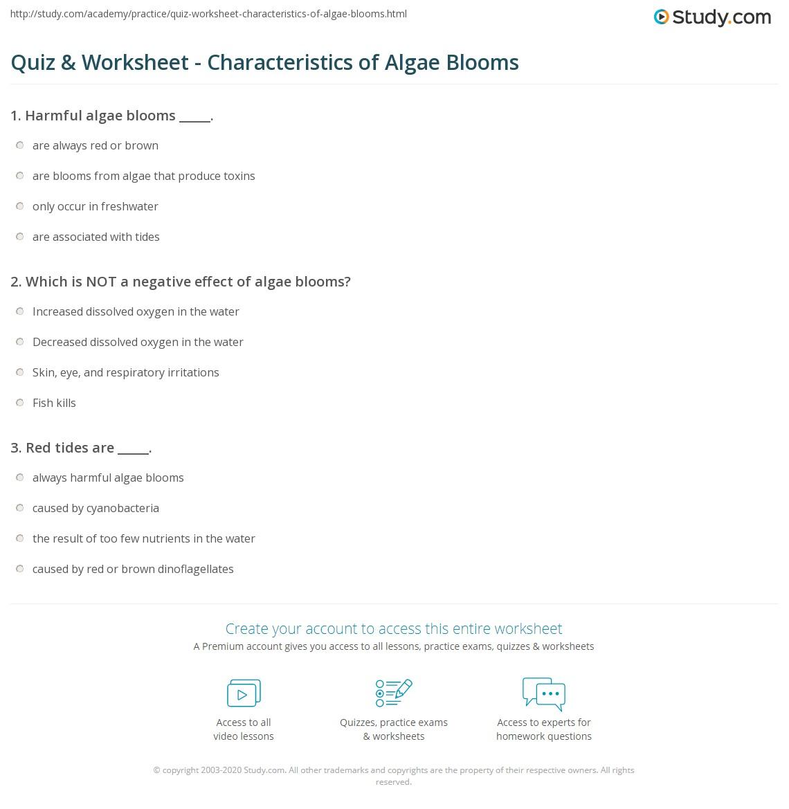 quiz worksheet characteristics of algae blooms. Black Bedroom Furniture Sets. Home Design Ideas