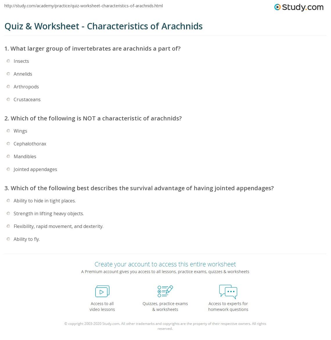 Arachnid Unit Study Quiz & Workshee...
