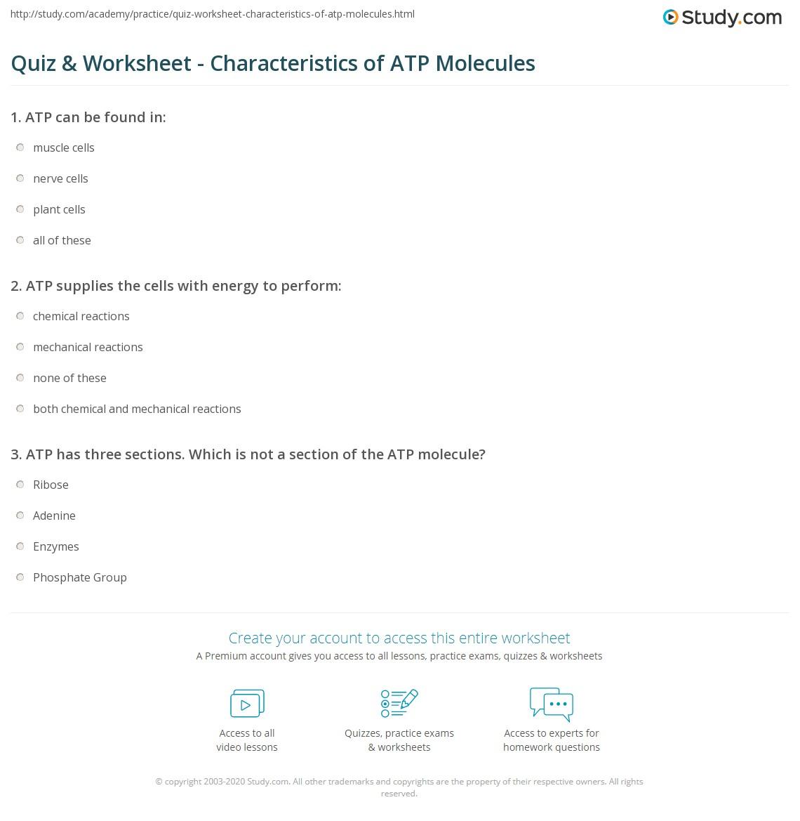 Worksheets Atp Worksheet quiz worksheet characteristics of atp molecules study com print definition worksheet