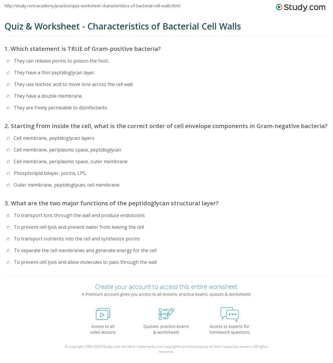 quiz worksheet characteristics of bacterial cell walls. Black Bedroom Furniture Sets. Home Design Ideas