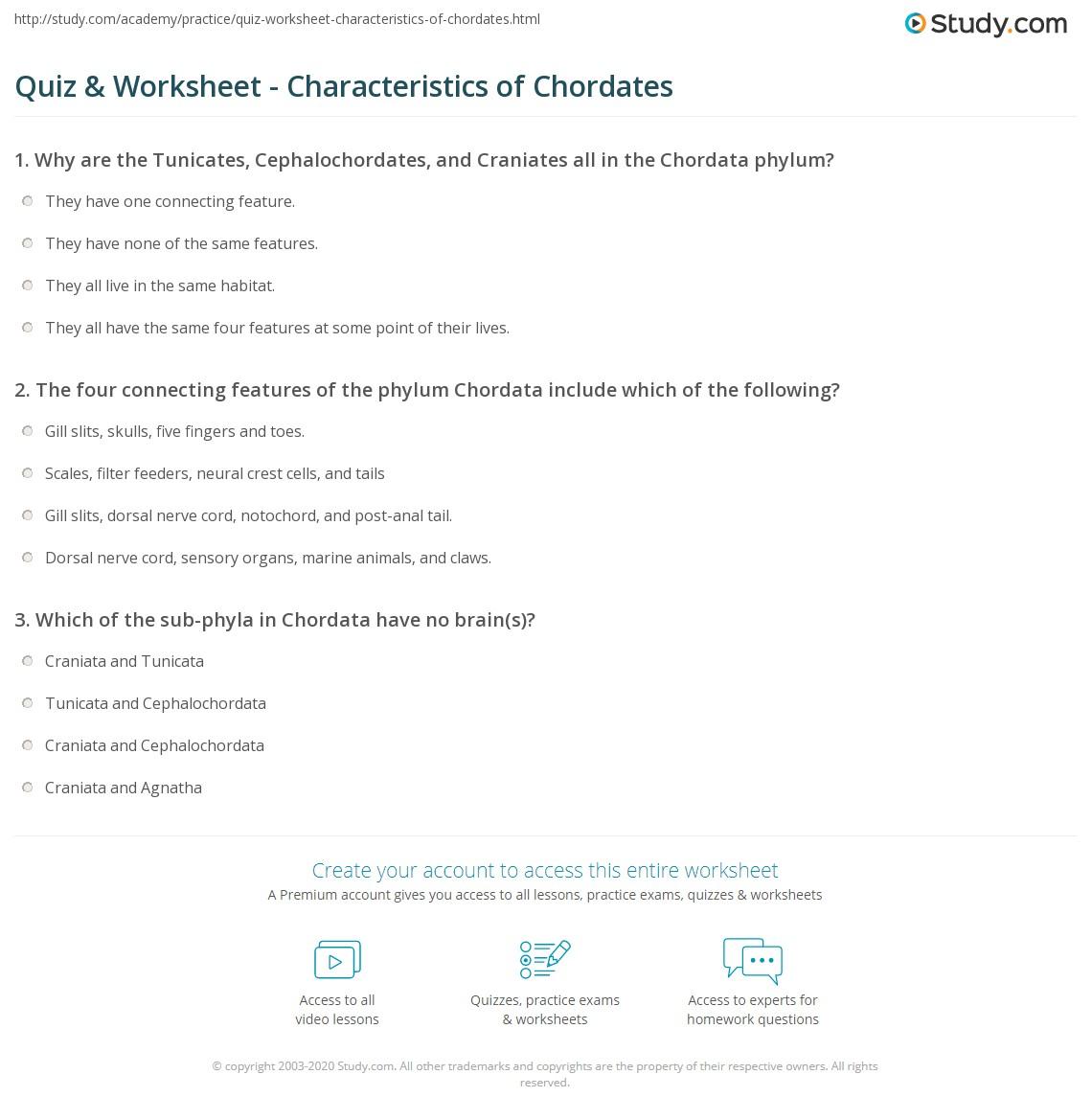 quiz worksheet characteristics of chordates study com rh study com Cladogram of Chordates Marine Chordates