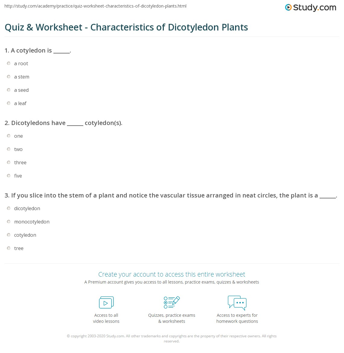 Quiz & Worksheet - Characteristics of Dicotyledon Plants