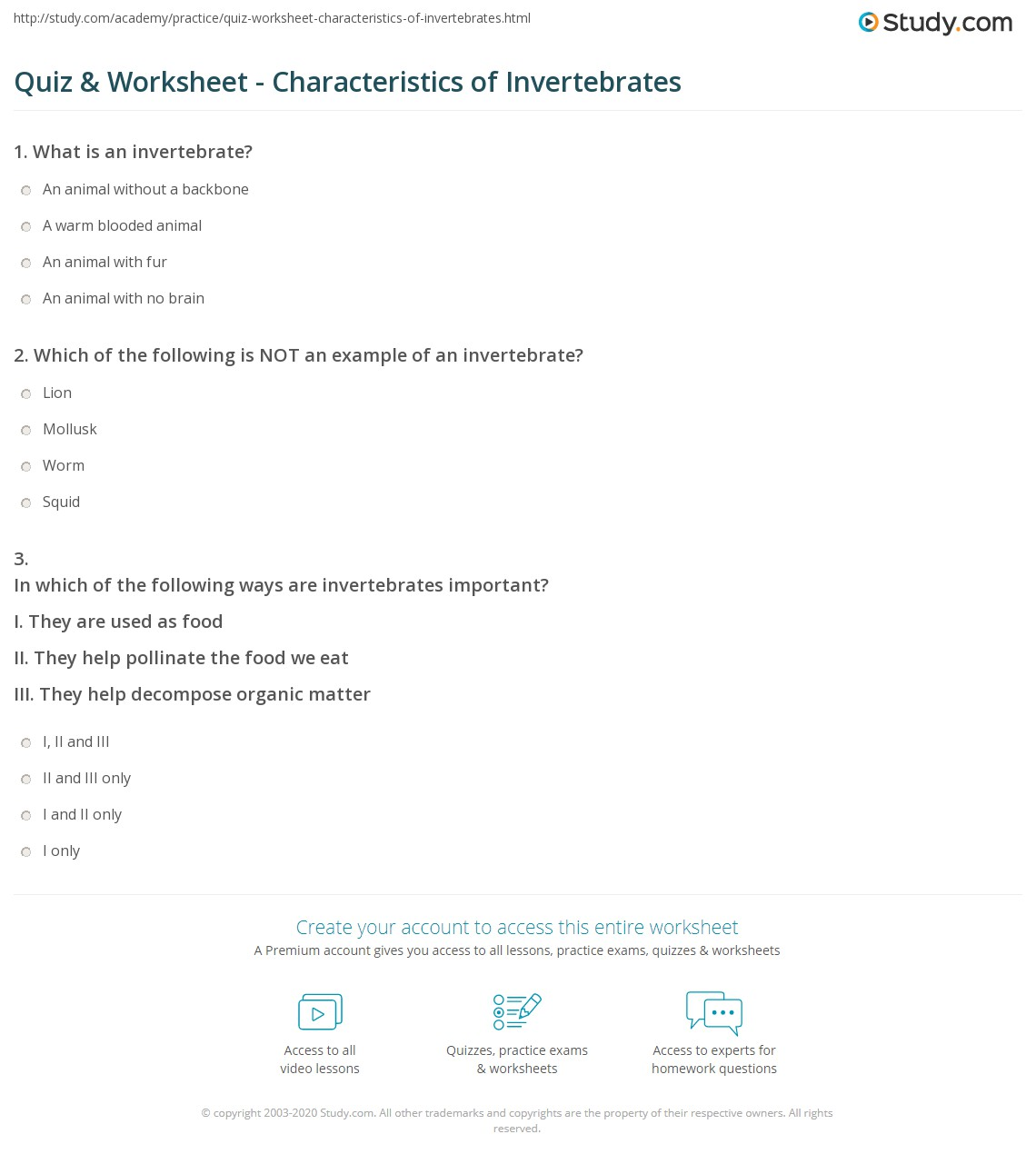 Vertebrates And Invertebrates Worksheet Teaching Resources ...