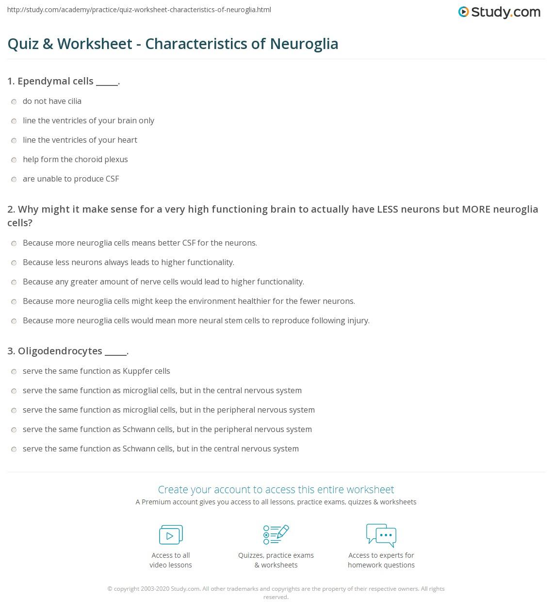 quiz & worksheet - characteristics of neuroglia   study
