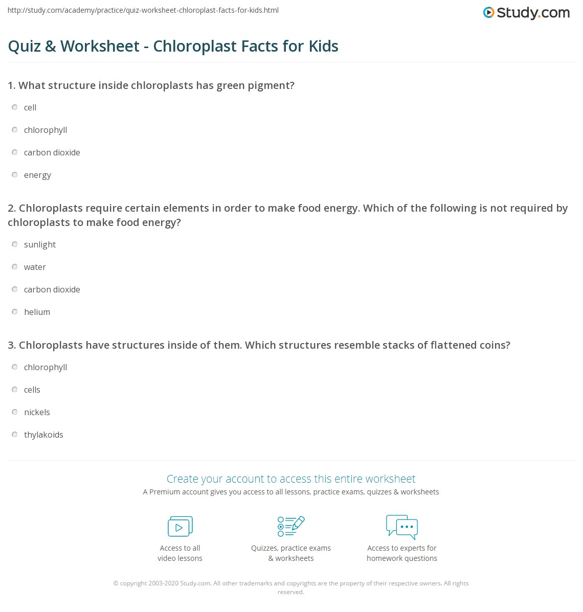quiz worksheet chloroplast facts for kids. Black Bedroom Furniture Sets. Home Design Ideas