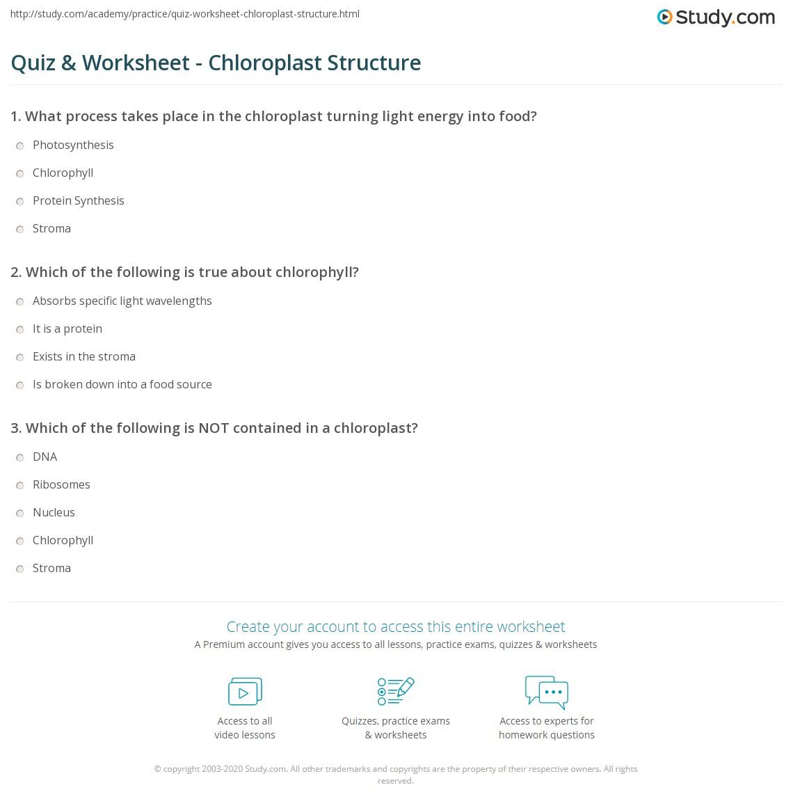Quiz Worksheet Chloroplast Structure Study