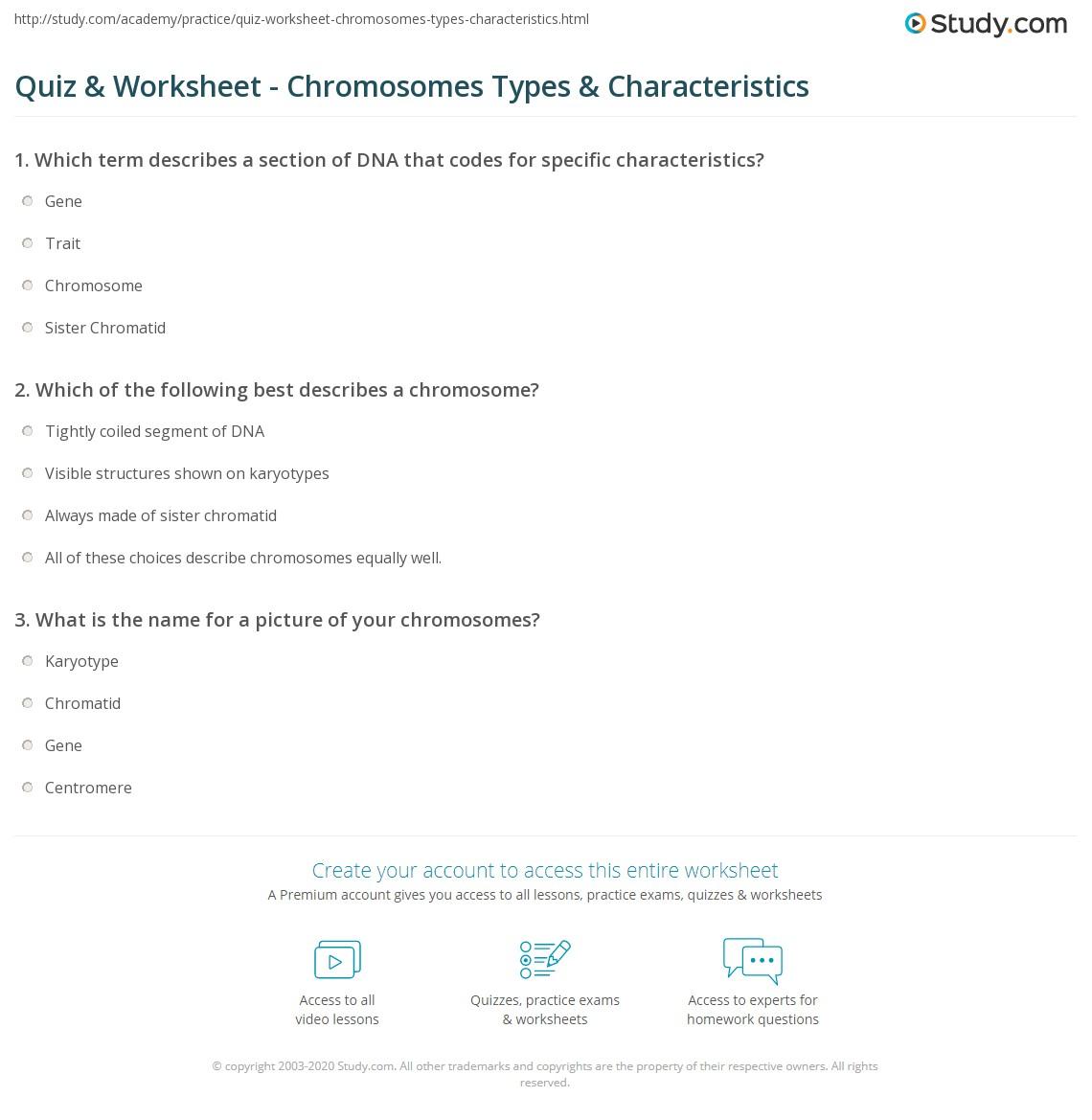 Quiz Worksheet Chromosomes Types Characteristics – Chromosomes Worksheet