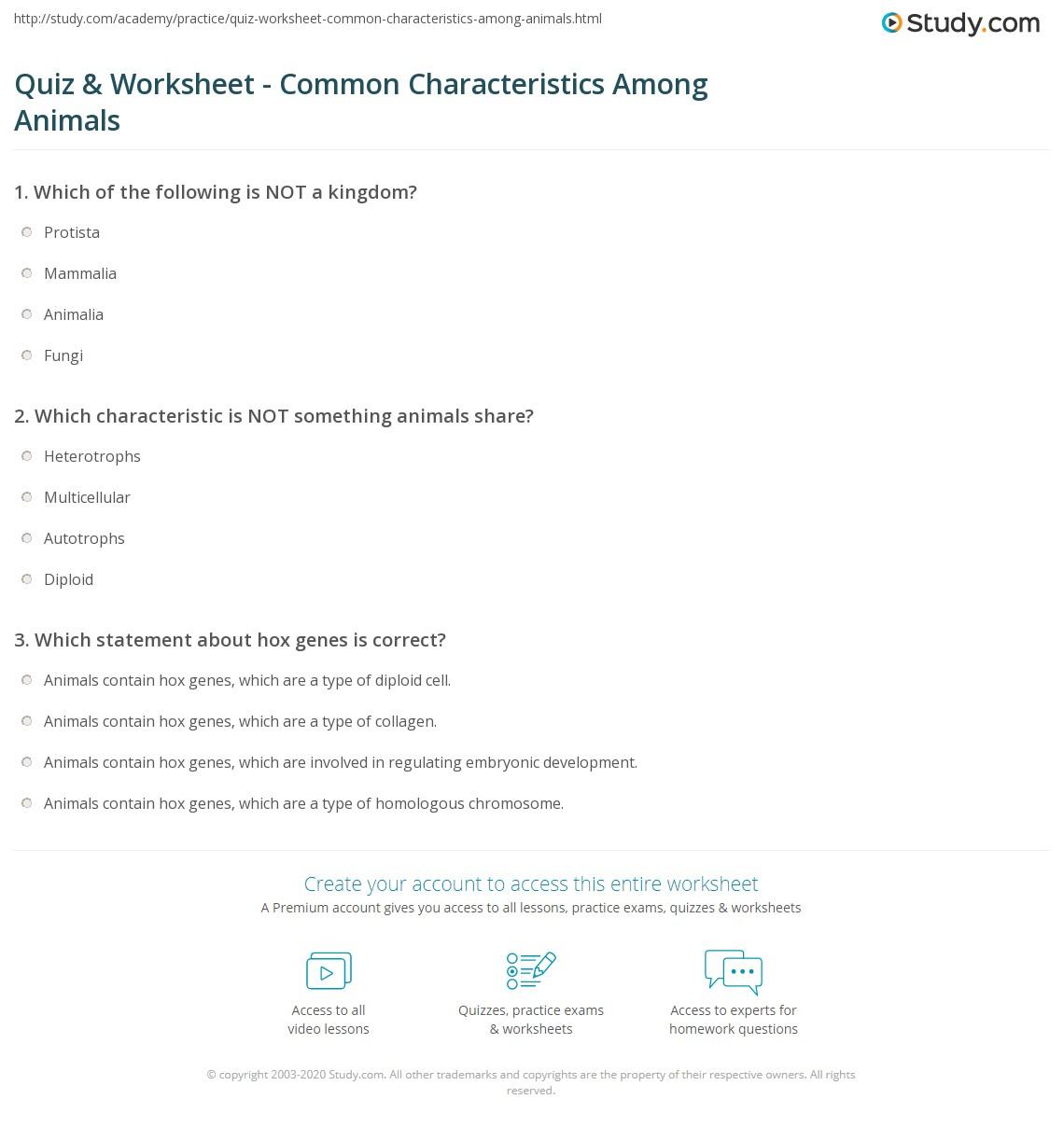 Quiz & Worksheet mon Characteristics Among Animals