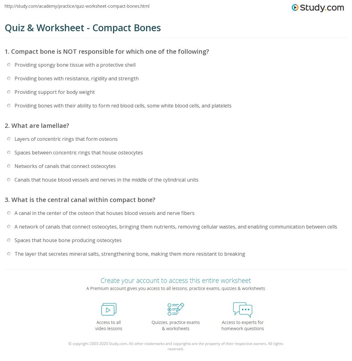 Quiz Worksheet Compact Bones Study