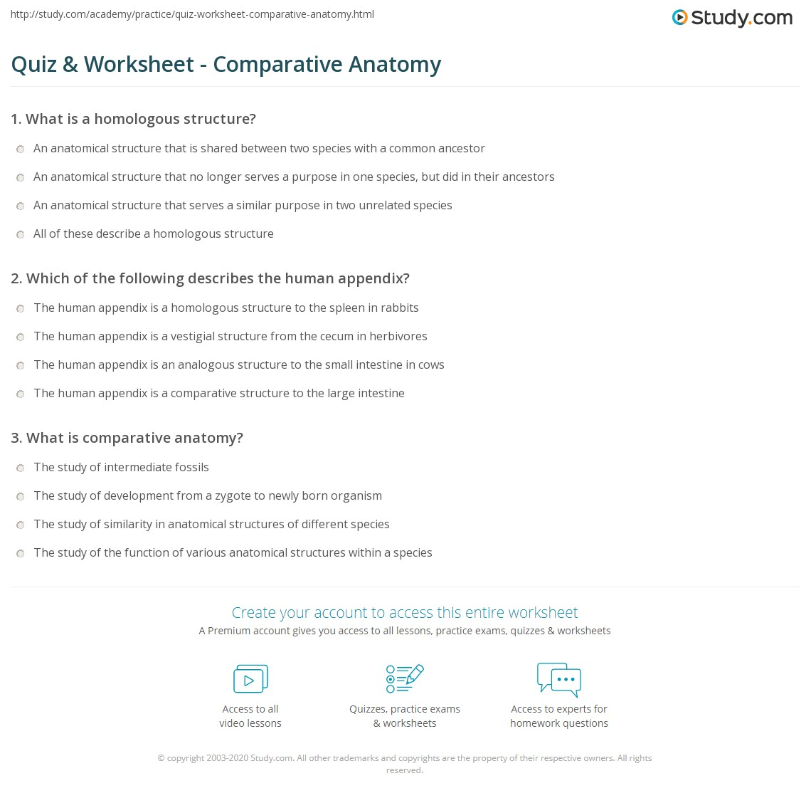 Quiz Worksheet Comparative Anatomy Study