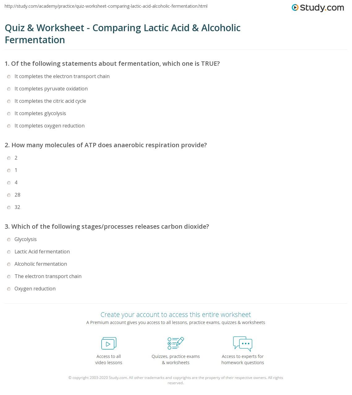 worksheet Fermentation Worksheet quiz worksheet comparing lactic acid alcoholic fermentation print comparison contrast examples worksheet